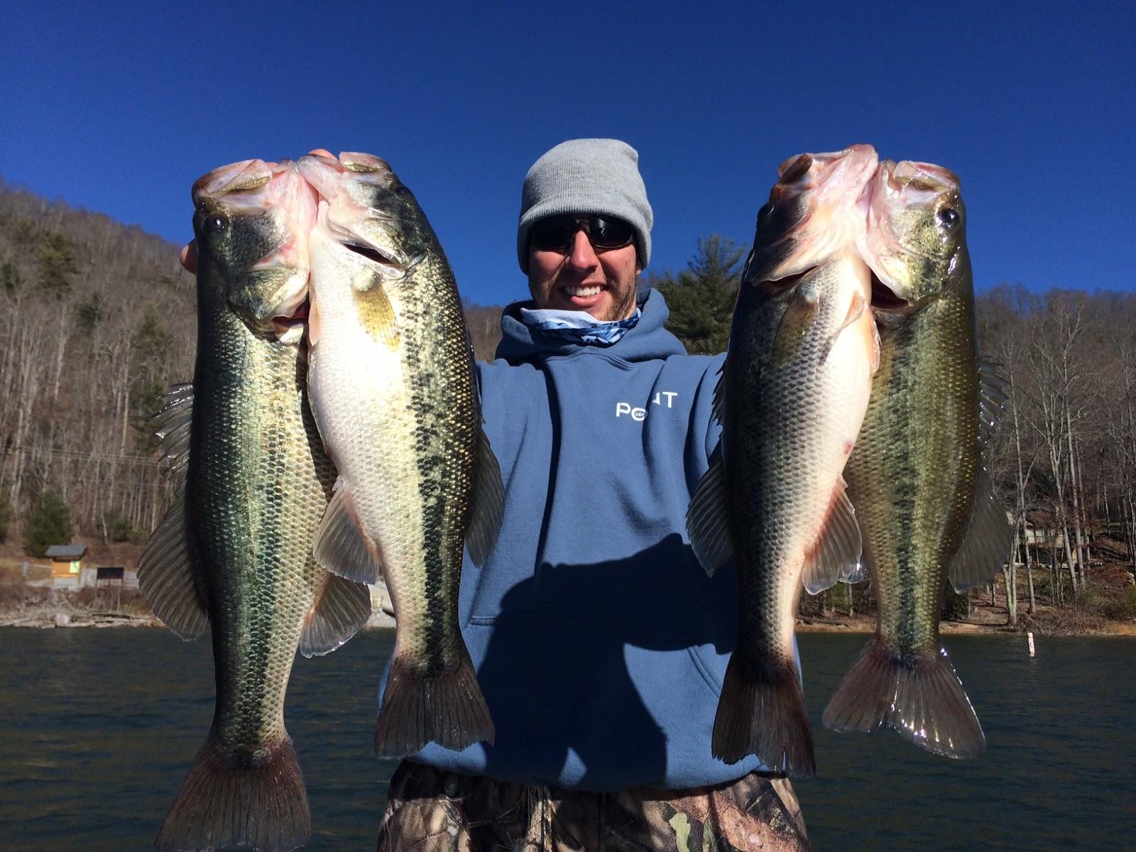 Dream catcher 39 s fishing fishing fontana lake nc for Fontana lake fishing