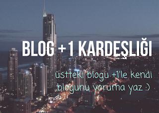 Blog%2B%252B1%2Bkarde%25C5%259Fli%25C4%259Fi%2B%25281%2529.png