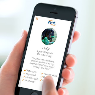 Pet Resume profile for Lucy the Dachshund Dog