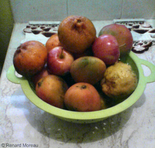Apples, Mangoes, Lemons And Portugals