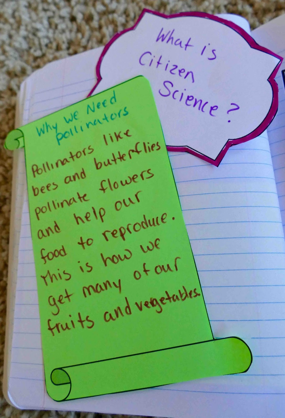 Teaching Science With Lynda Interactive Notebook Ideas For Fun Squishy Circuits Third Inserts Should Be Creative But Not Take Up So Much Time That All The Learning Is About Making Elaborate Fold Older Kids Can Of Course Do More