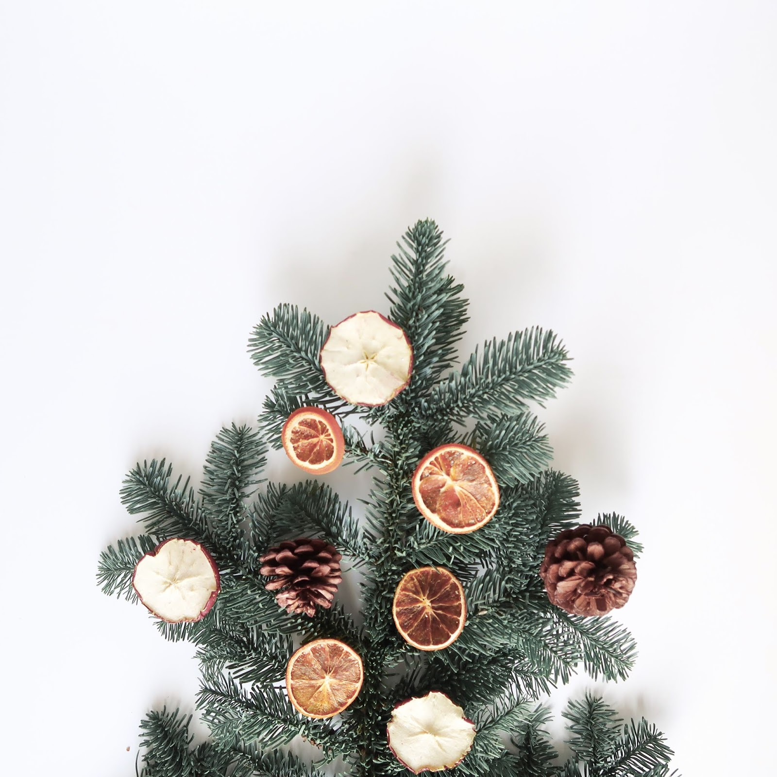 A last minute gift guide for sustainable shoppers...
