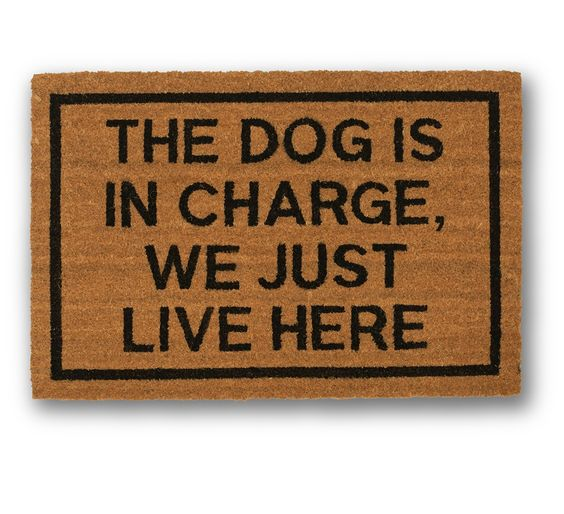 The Dog Is In Charge