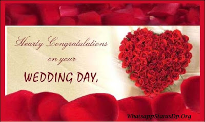 best-wedding-quotes-for-whatsapp-profile-picture