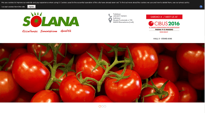 Picture to Italian food exporter company named Solana