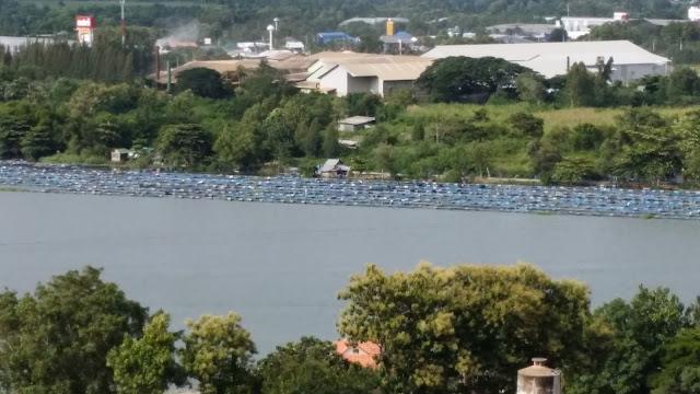 Vistas desde Wat Ban Tham - Kanchanaburi