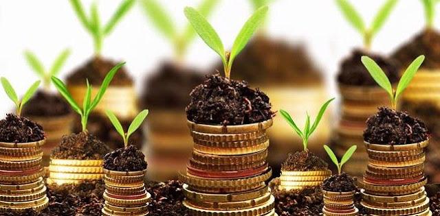 Fungsi dan Faktor Menentukan Tingkat Investasi
