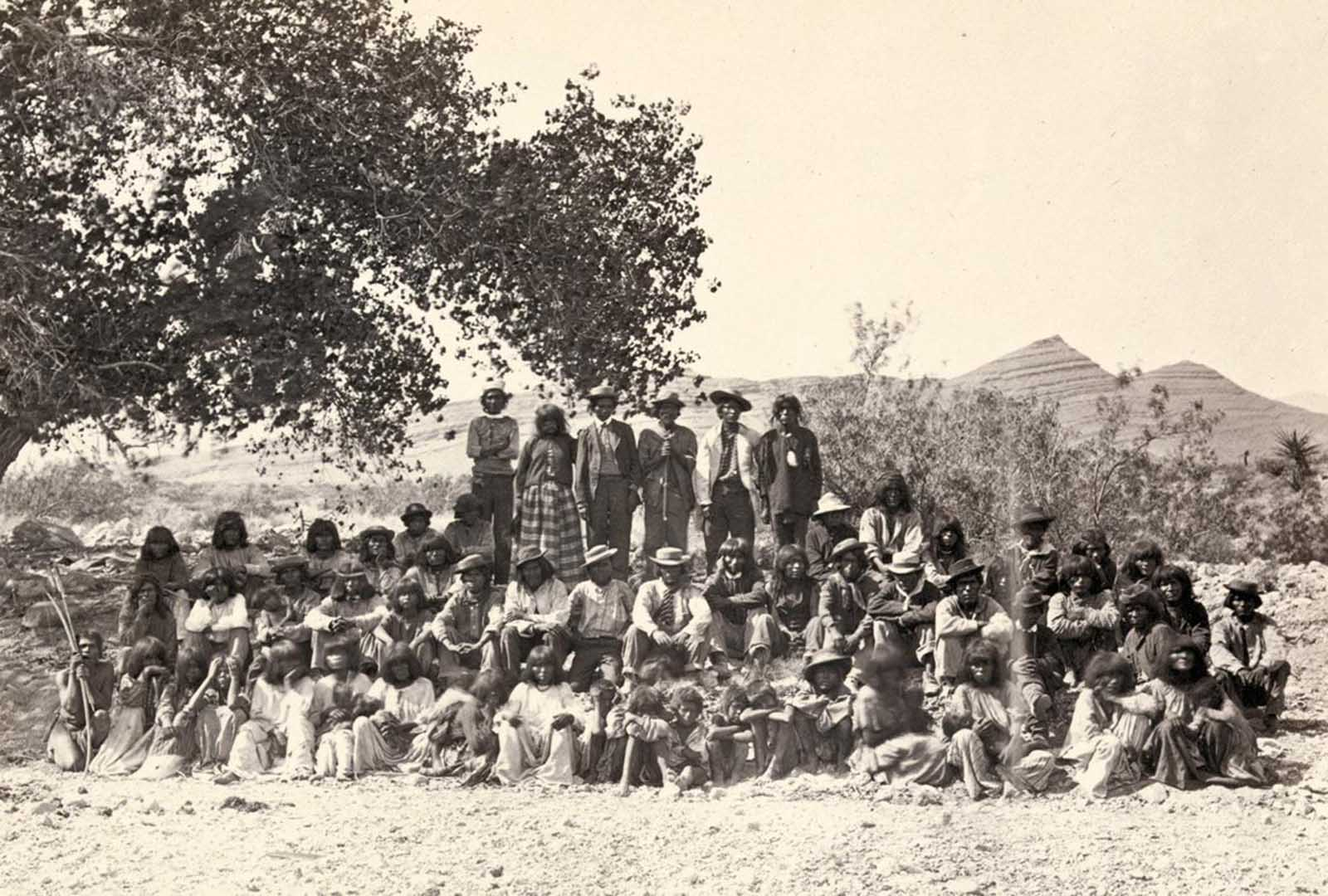 Native American (Paiute) men, women and children sit or stand and pose in rows under a tree near probably Cottonwood Springs (Washoe County), Nevada, in 1875.