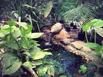 גן בוטני אילת