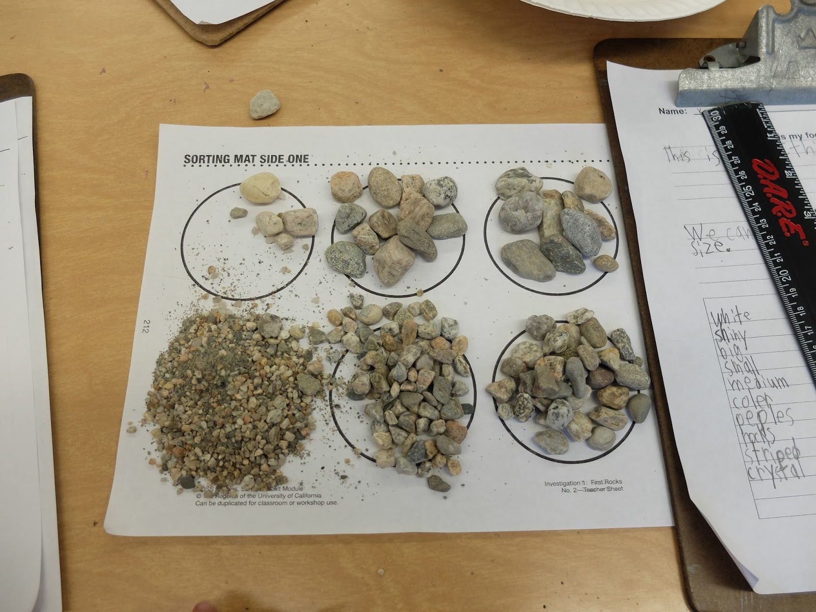 First Grade Adventurers 2nd Grade Science Sorting And