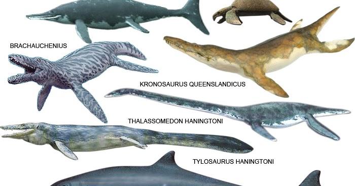 Dinosaurios Y Su Historia Reptiles Marinos Caracteristicas La tierra no fue posiblemente estamos en presencia de los reyes de los mares, dinosaurios marinos gigantes que. dinosaurios y su historia blogger