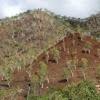 Perjalanan panjang Timor Timur menuju integrasi