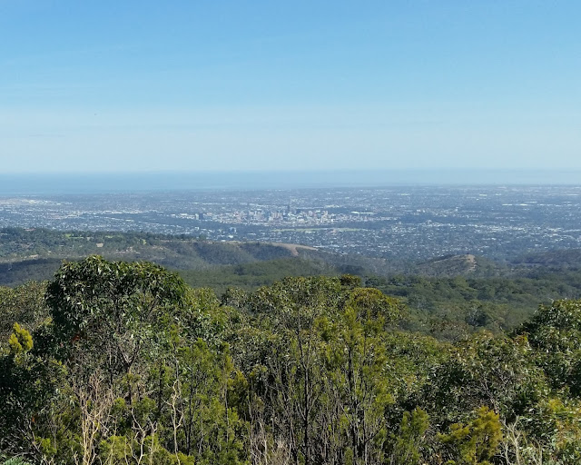 Trees and vegetation on Mount Lofty in foreground. Beyond the nearest hills,  Adelaide city in the middle distance surrounded by parklands which appear as dark treetops. In the distance is the water of Gulf St Vincent.