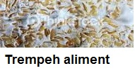 Trempeh nutriment riche