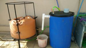 The Solution is in Biology: A Startup Takes Biogas to the