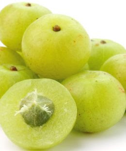 Amla is the main berry that can fix 100 Ailments