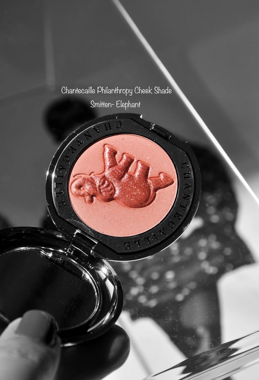 Chantecaille Philanthropy Cheek Shade Smitten-Elephant swatches