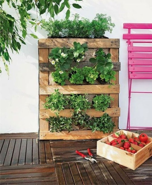 Benefits And Advantages of Vertical Gardens 3