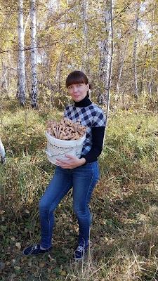 время опят в Омске