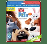 La Vida Secreta de tus Mascotas (2016) 3D SBS BRRip 1080p Audio Dual Latino/Ingles 5.1