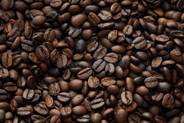 usaha kopi