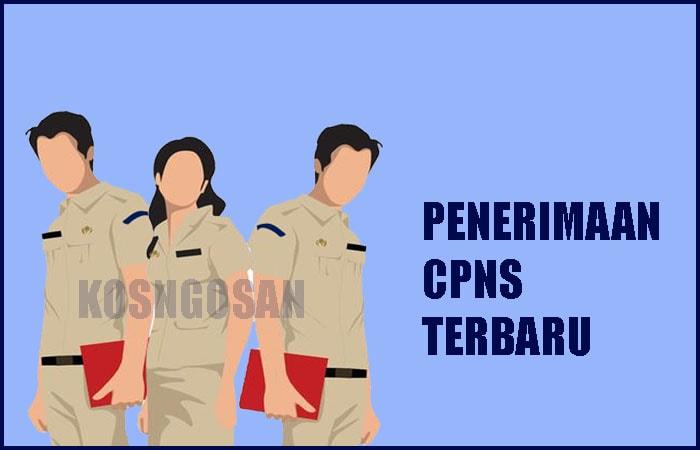 Pengumuman Penerimaan CPNS 2019 Terbaru Beserta Formasinya