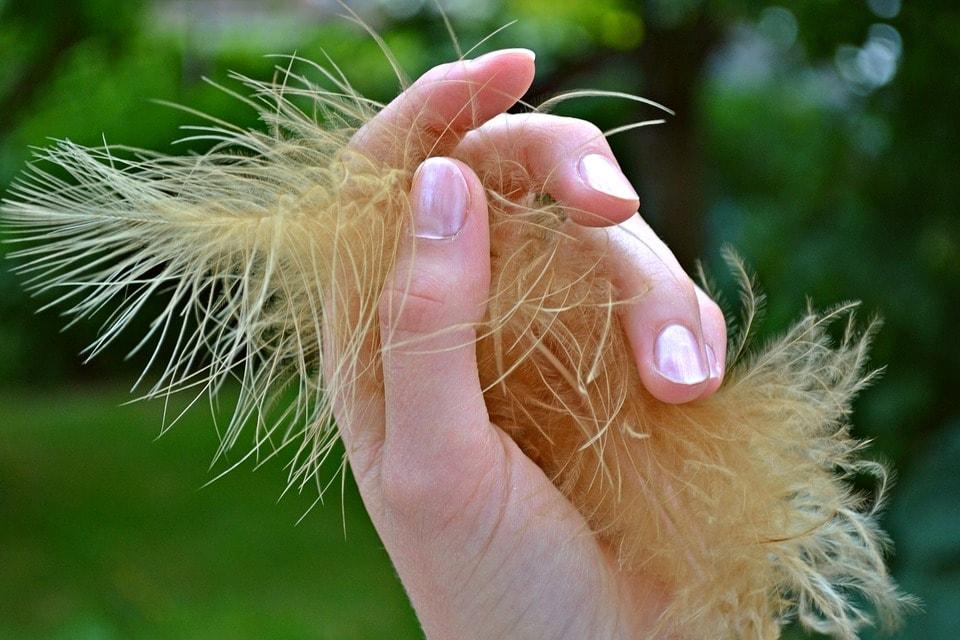 Jak dbać o dłonie i paznokcie ?