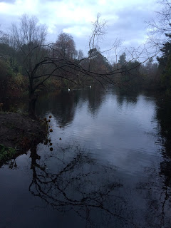 Lake in Altamont Gardens, County Carlow