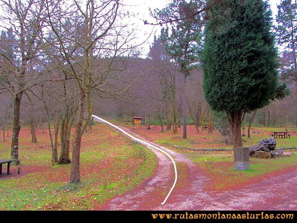Rutas Montaña Asturias: Saliendo del área recreativa de la Degollada