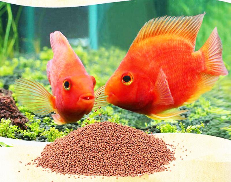 Comida Alimento Potenciador Color Gambas Y Peces. Pet Supplies