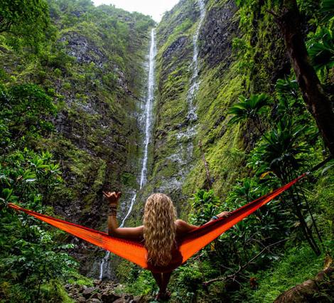 The waterfall on the island of O'ahu