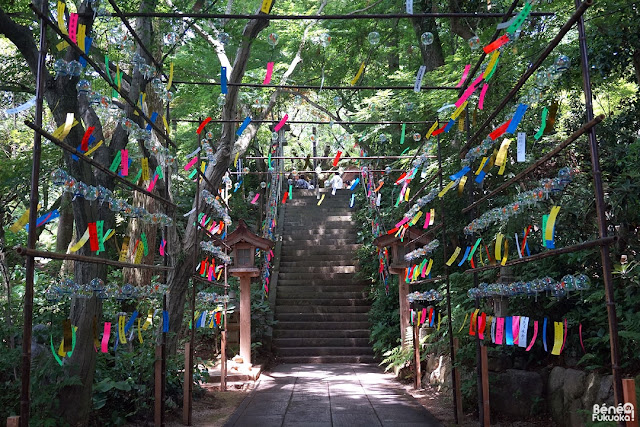 Wind bell festival, Nyoirin-ji (Kaeru-dera), a frog temple in Fukuoka