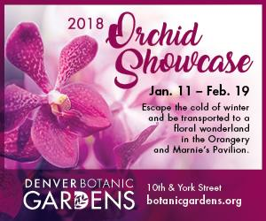 https://www.botanicgardens.org/exhibits/orchid-showcase