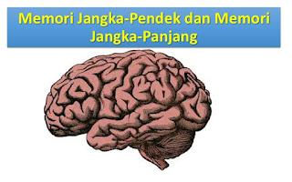 memori jangka pendek dan memori jangka panjang