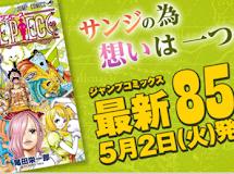 One Piece SBS 85