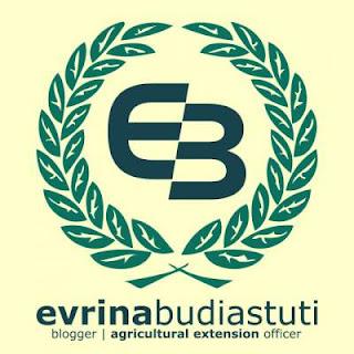 http://evrinasp.com