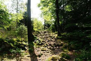 Ein steiler Weg nach oben, der mit vielen großen Steinen übersäht ist