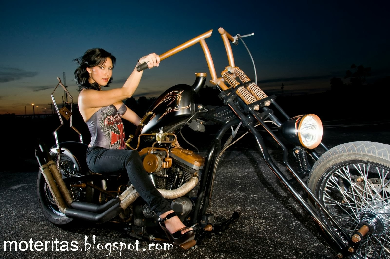 Part  Harley Davidson