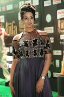 Sanjjanaa Galrani aka Archana Galrani in Maroon Gown beautiful Pics at IIFA Utsavam Awards 2017 53.JPG