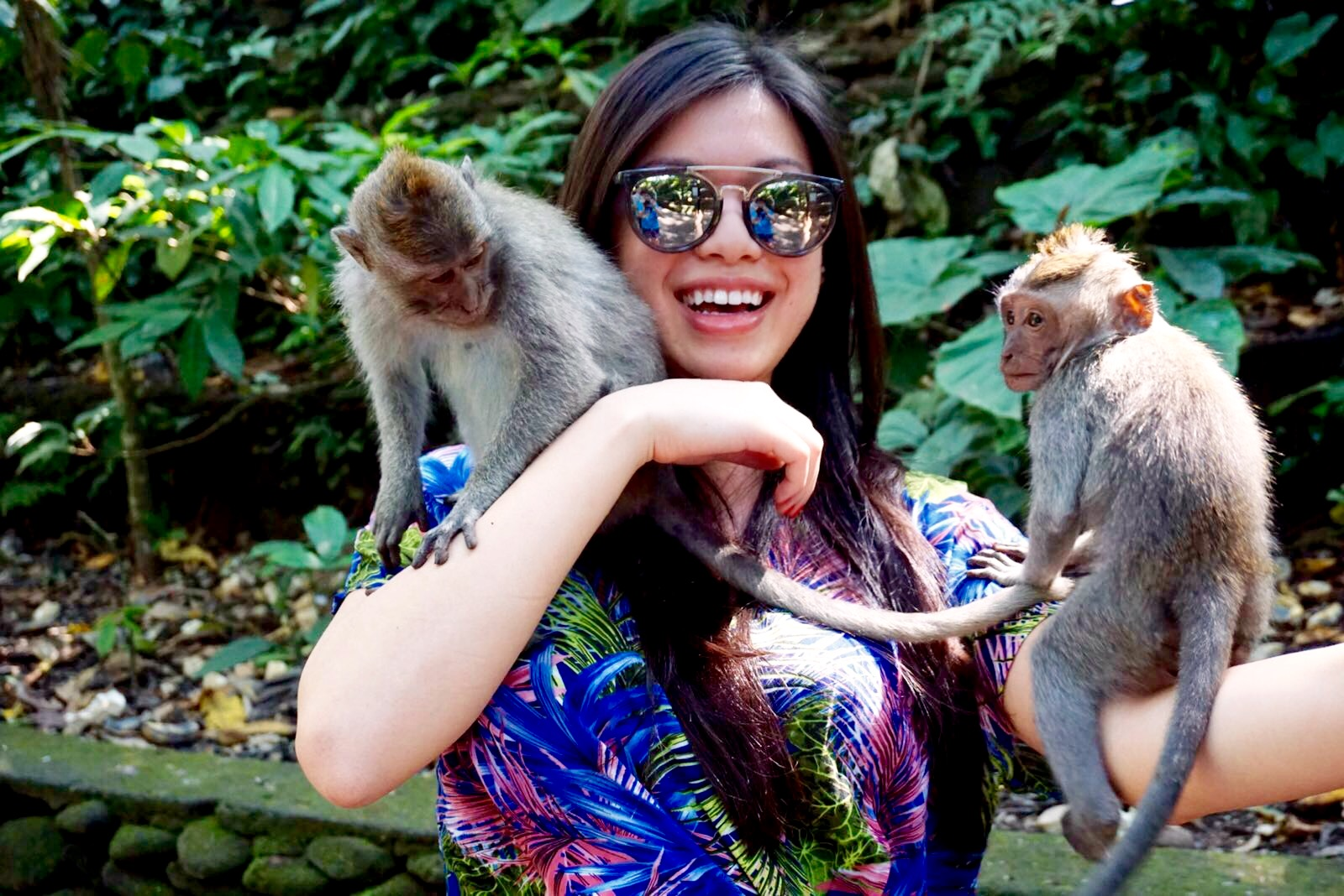 Meeting the monkeys at the monkey forest in Ubud, Bali.