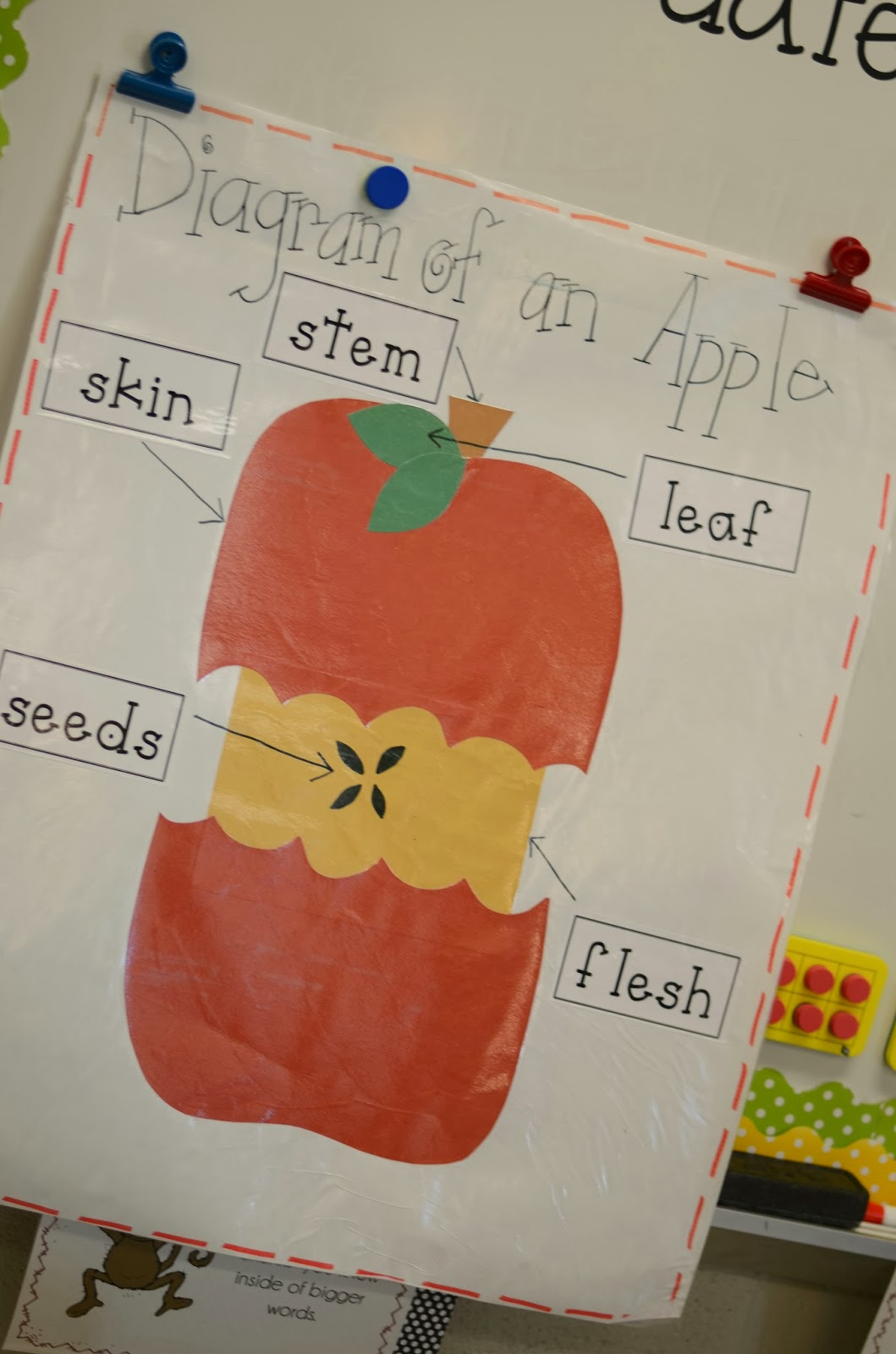 Apples And Visual Plans