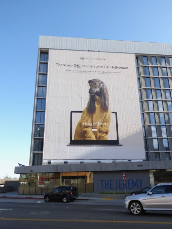 Giant SquareSpace canine stylists billboard