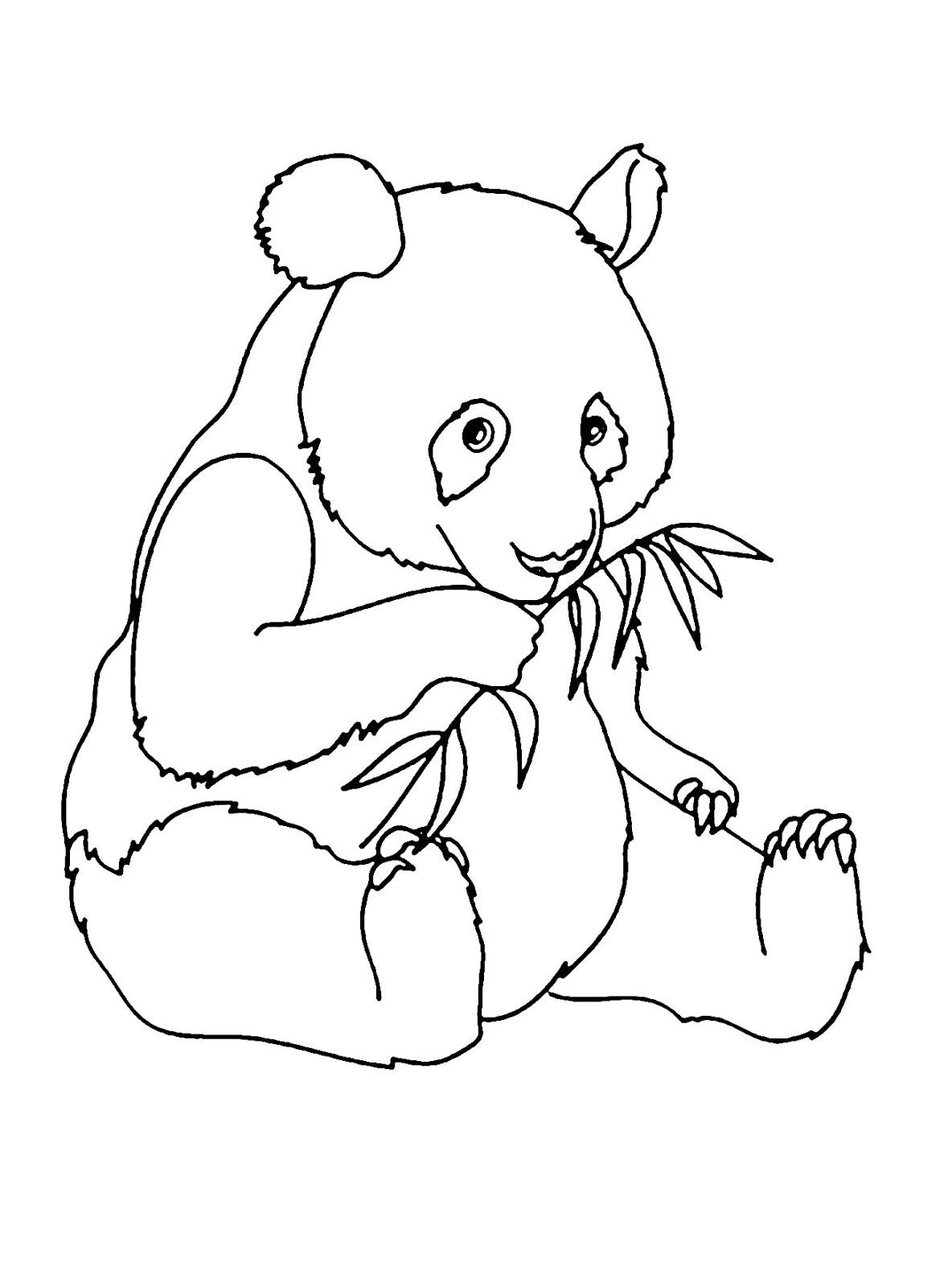 Tranh tô màu con gấu trúc đang ăn xinh