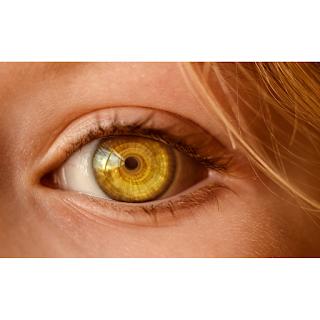 wheatgrass prevent dark circles under the eyes and stimulate good sleep