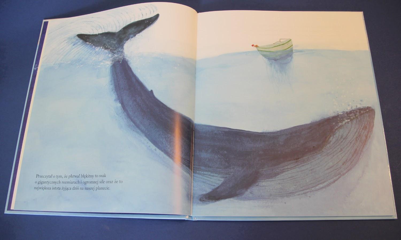 """popularnonaukowy picture book dla dzieci """"Płetwal błękitny"""" Jenni Desmond, Wydawnictwo Łajka"""