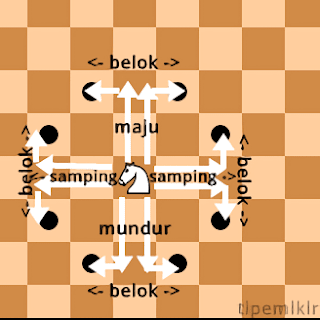 pola gerakan kuda bidak catur, pattern move knight chess