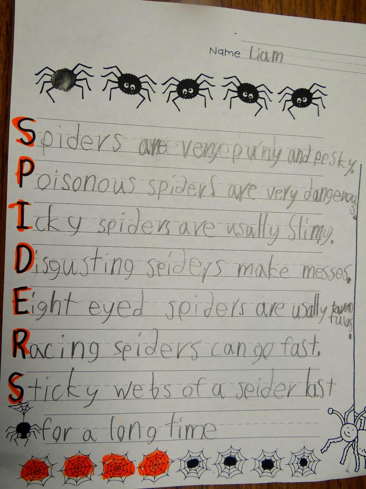 hight resolution of Spider Art – Patties Classroom