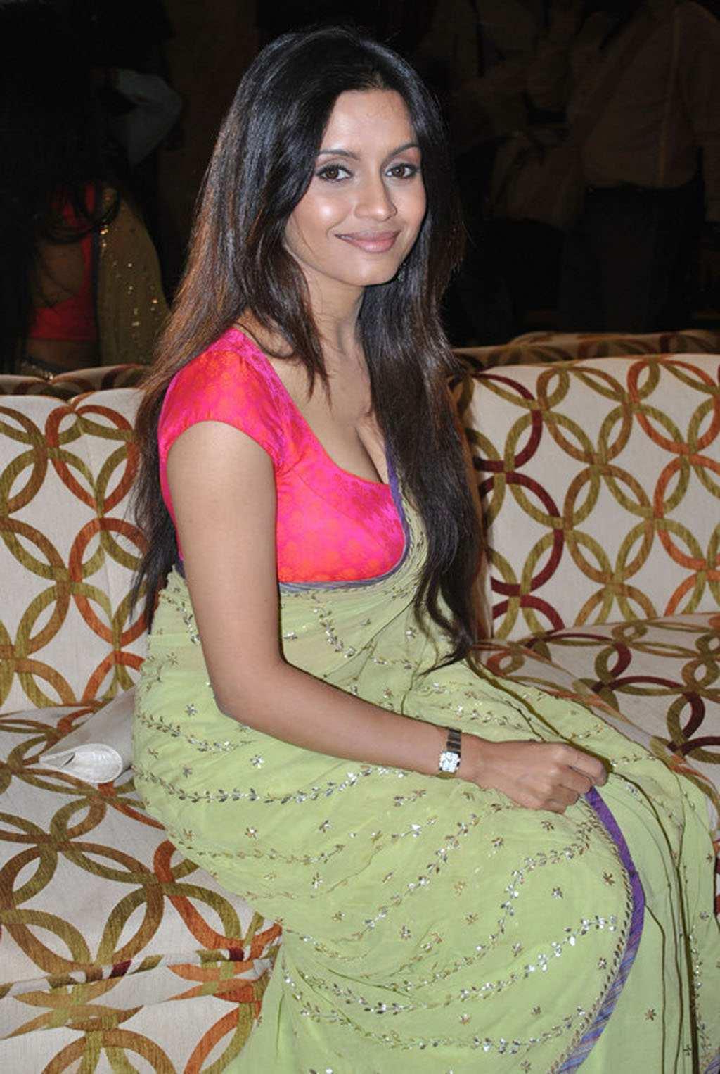 Bhavana Paani Spicy Saree Pics Beautiful Indian Actress -1238