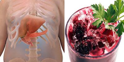 curar el hígado graso