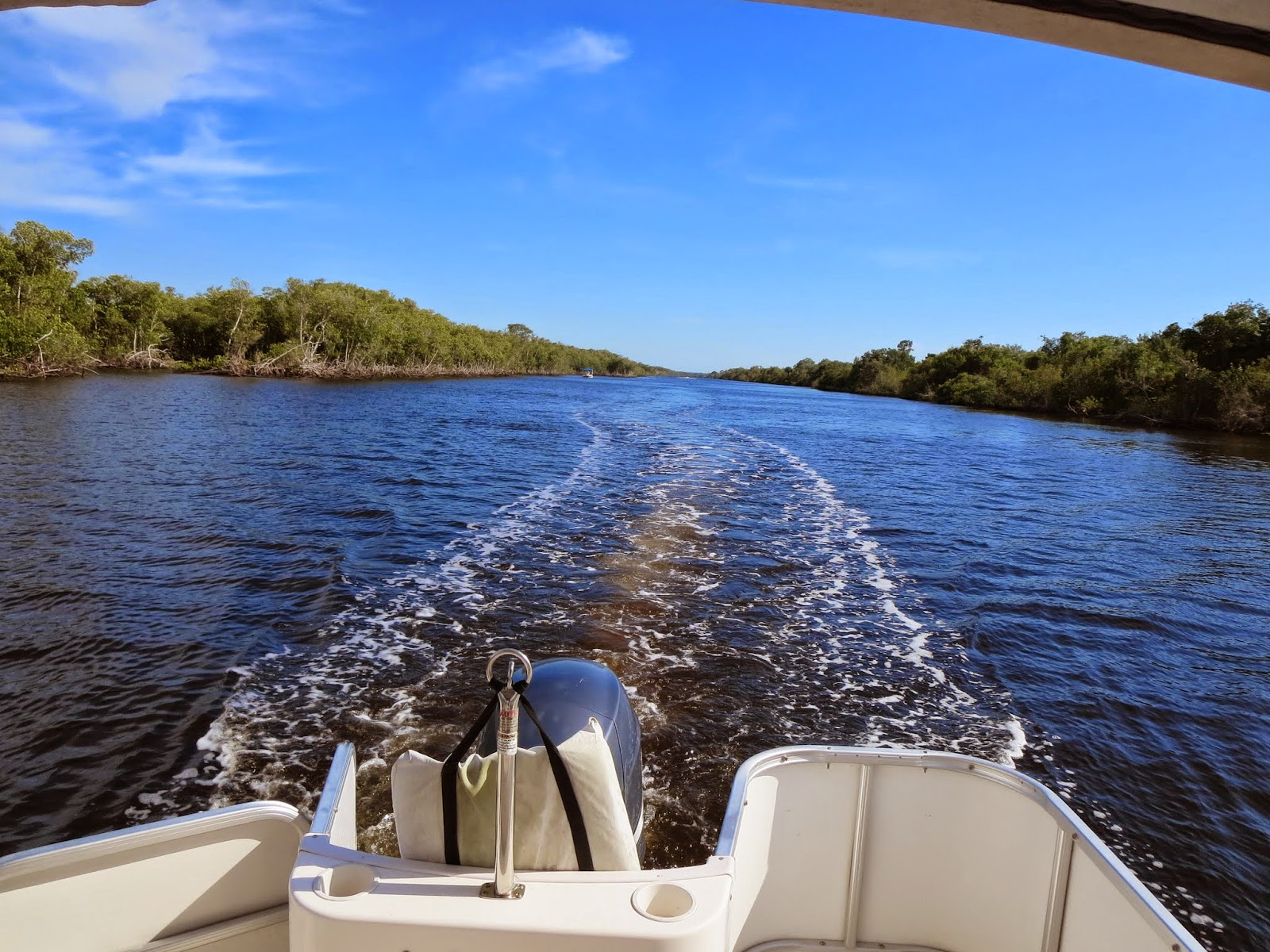 Boat wake along a channel through the Florida Everglades.